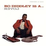 Bo Diddley - Congo