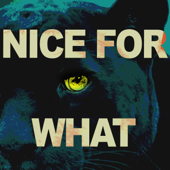 Download 3 Dope Brothas - Nice For What (Originally Performed by Drake) [Instrumental]