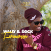 Wally B. Seck - Faramareen artwork