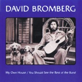 David Bromberg - Spanish Johnny