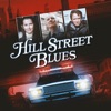 Hill Street Blues, Season 5 - Synopsis and Reviews