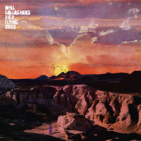 Noel Gallagher's High Flying Birds - Alone On The Rope artwork