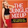 The Jungle Mix Up ジャケット写真