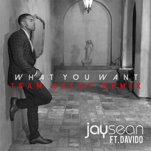 Jay Sean & Davido - What You Want
