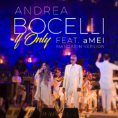If Only (Mandarin Version) - Andrea Bocelli & 張惠妹
