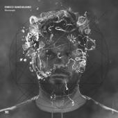 Enrico Sangiuliano - Symbiosis