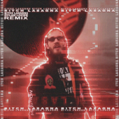 Bitch Lasagna (Remix) [feat. Party in Backyard & Pewdiepie]