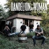 Joe Stamm Band - Dandelion Woman