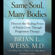 Brian L. Weiss - Same Soul, Many Bodies