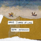 Horse Jumper of Love - Stray Dog Song