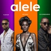 Alele (feat. Dj Consequence) - Single, Seyi Shay & Flavour