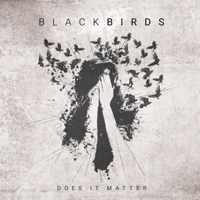 Does It Matter - Single - Blackbirds
