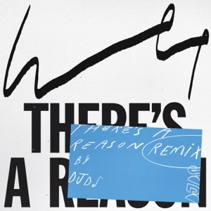 There's a Reason (DJDS Remix) - Single Mp3 Download