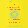 David Foster Wallace - A Supposedly Fun Thing I'll Never Do Again  artwork