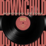 Downchild Blues Band - Albany, Albany