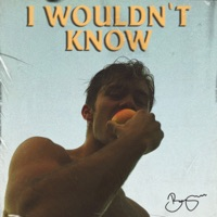 BENJAMIN INGROSSO - I Wouldn't Know Chords and Lyrics