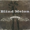 Live At the Palace, Blind Melon