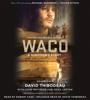 David Thibodeau & Leon Whiteson - Waco  artwork