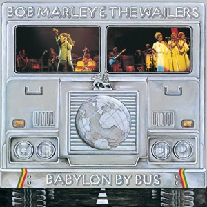 Bob Marley & The Wailers - Positive Vibration