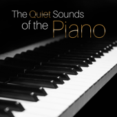 The Quiet Sounds of the Piano: Easy Listening to Wake Up Happy, Coffee & Tea Break, Relaxing Time at Home, Café Paris, Acoustic Moody Piano Music