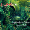 Puka - Soplo de la Vida: Medicine Songs artwork