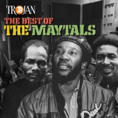The Maytals - Give Peace a Chance