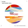 GeoM - Northern Soul (Melih Aydogan Remix) artwork
