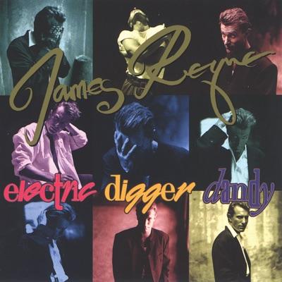 Electric Digger Dandy - James Reyne