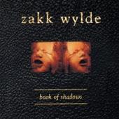 Zakk Wylde - Throwin' It All Away