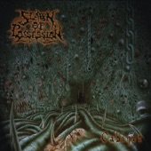 Spawn of Possession - Sworm of the Formless