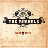 The BusheLs - Cheap Beer Bar Brand Blues