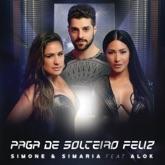 Paga De Solteiro Feliz (feat. Alok) - Single