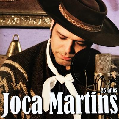 25 Anos - Joca Martins