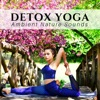 Detox Yoga Ambient Nature Sounds New Age Spirituality Music Meditation Practice