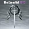 Toto - The Essential Toto kunstwerk