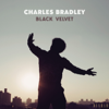 Charles Bradley - Black Velvet  artwork