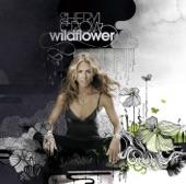 Sheryl Crow - I Know Why