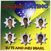 Eu Te Amo Meu Brasil, Vol. 7