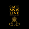 Simple Minds - Don't You Forget About Me (Live) artwork