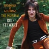 Handbags & Gladrags: The Essential Rod Stewart, Rod Stewart