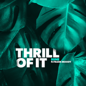 Thrill of It (feat. Frank Moody)