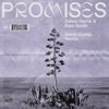 Promises David Guetta Extended Remix Single