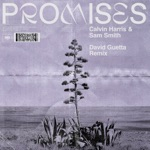 Promises (David Guetta Extended Remix) - Single