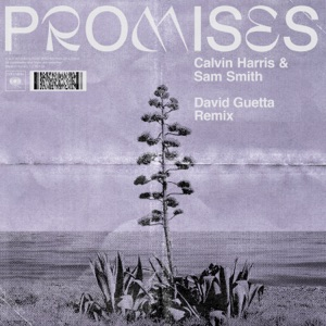 Promises (David Guetta Extended Remix) - Single Mp3 Download