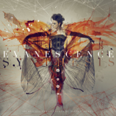 Unraveling (Interlude) - Evanescence