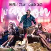 Passion (feat. Shaggy & Costi) - Single
