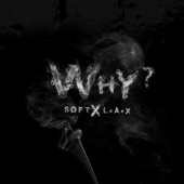 Why (feat. L.A.X) artwork