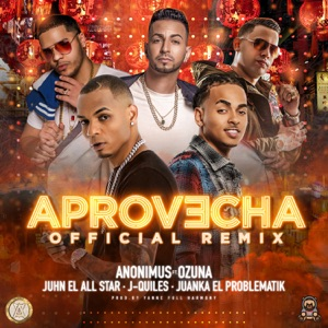 Aprovecha (Remix) [feat. Ozuna, Juanka, Juhn & Justin Quiles] - Single Mp3 Download