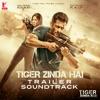 Tiger Zinda Hai Trailer Soundtrack Instrumental Single