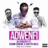 Adwenfi (feat. Shatta Wale & Kuami Eugene) - Single